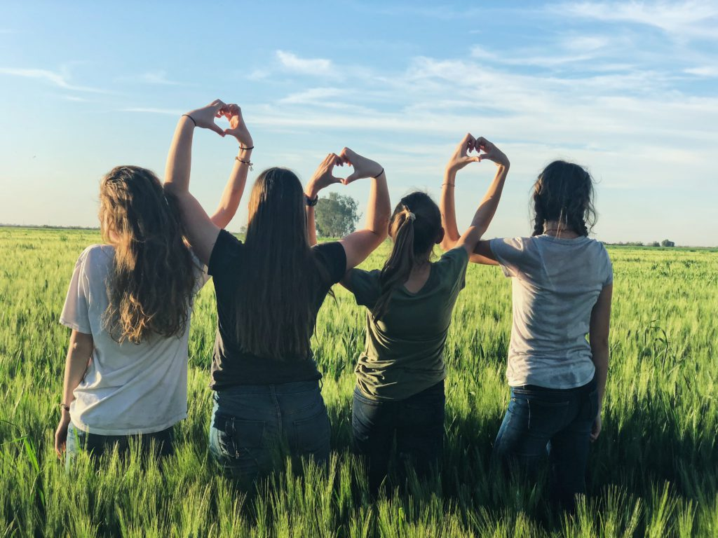 Vier Mädchen auf einer Wiese von hinten